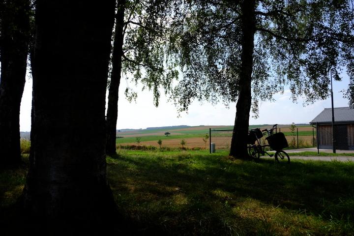 fields01_sm.jpg